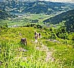 Maurerkogel-Gipfelwanderung